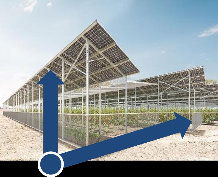 Kombinierte Produktion von erneuerbarer Energie und Nahrungsmitteln