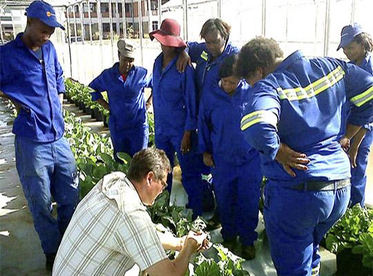 Pflanzenkunde für Schulungsteilnehmer