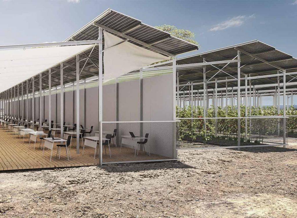 Solarenergie, Nahrungsmittel-Produktion und Schulungen in einem Konzept