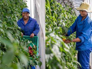 Landwirtschaftliche Schulungen