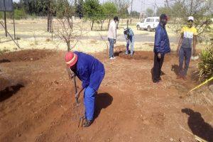 Trainee preparing the soil