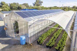 Gewächshäuser mit Solarmodulen