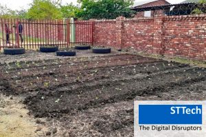 Nahrung für die Armen – neue Gemüsebeete in Kirchengärten
